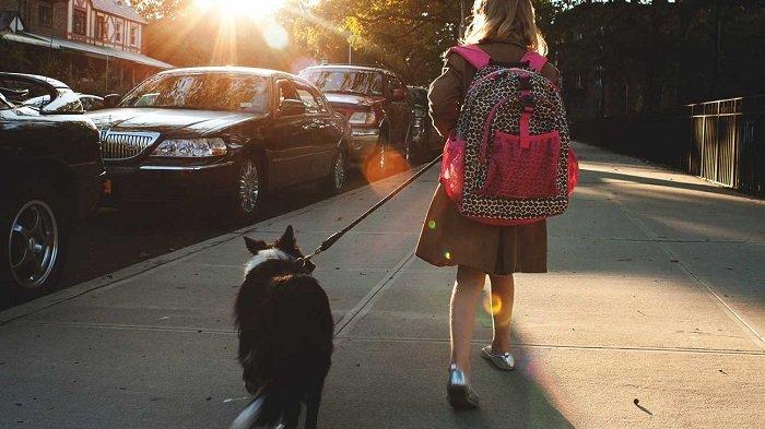 học sinh dắt chó trên đường