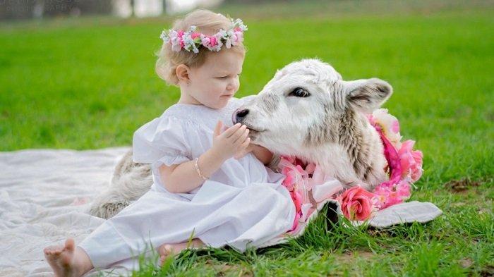 bé gái ngồi trên thảm cỏ cùng con cừu, phát triển ngôn ngữ