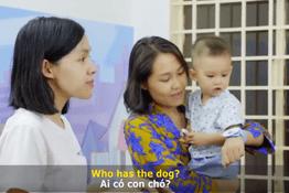 Học danh từ và động từ về các con vật | ODP PRACTICE