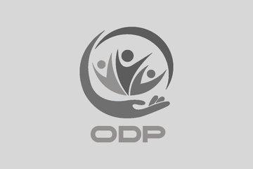 Trò chơi ghép hình | ODP FACTS