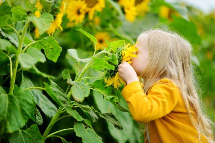trẻ thích khám phá trong giai đoạn khủng hoảng tuổi lên 3