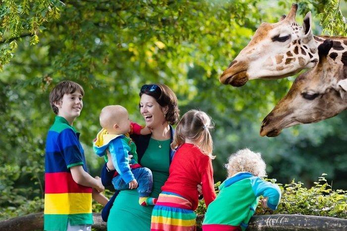 bố mẹ đưa trẻ tới sở thú là một cách dạy trẻ nhanh biết nói
