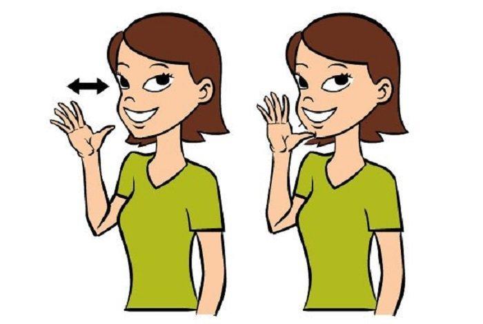 ngôn ngữ ký hiệu