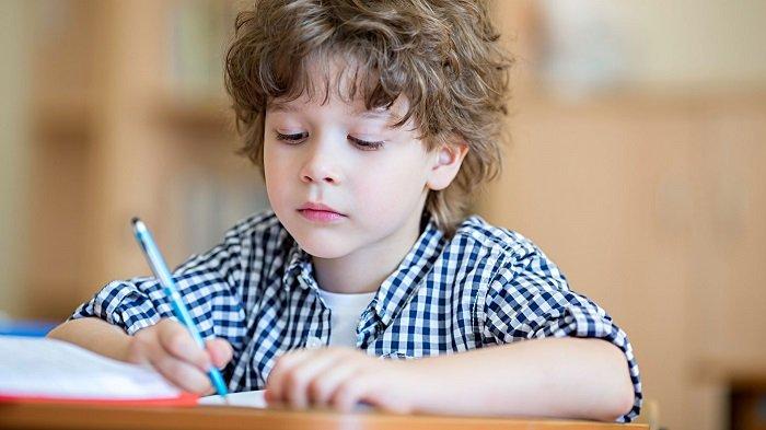 Trẻ tập trung học bài.