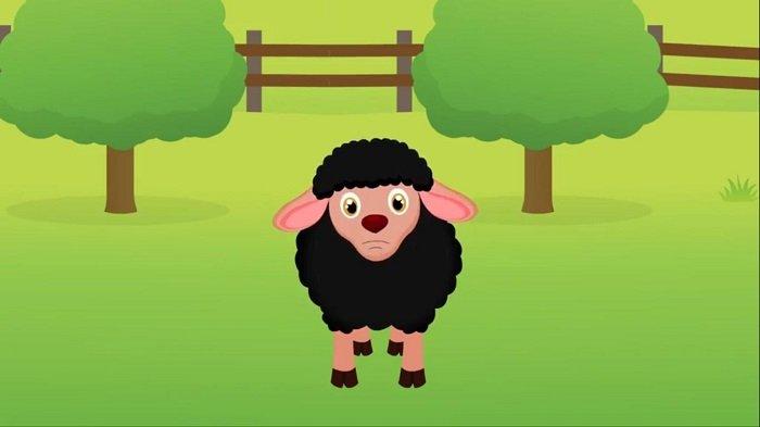 chú cừu đen