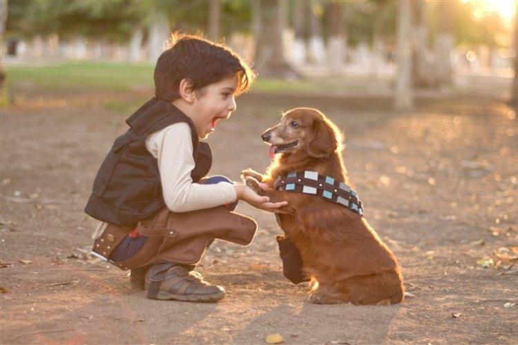 bé trai chơi đùa với chó cưng