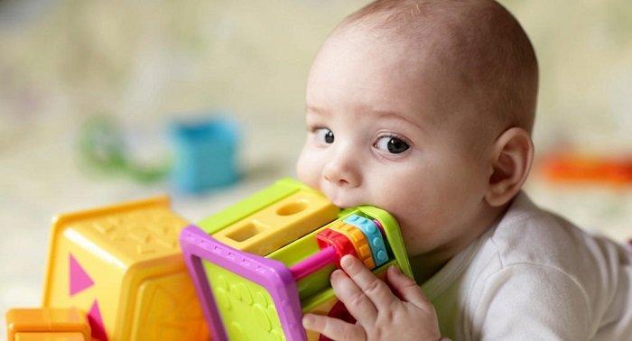 đồ chơi cho trẻ 6 tháng đến 1 tuổi