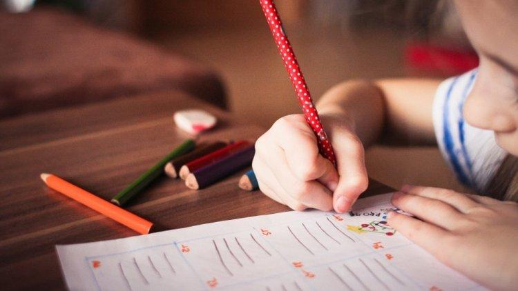 homeschooling ở Việt Nam, giáo dục tại gia