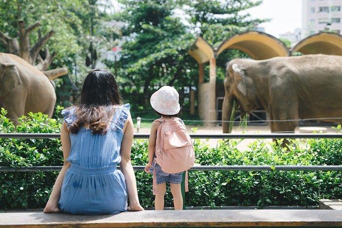 bé đi vườn thú