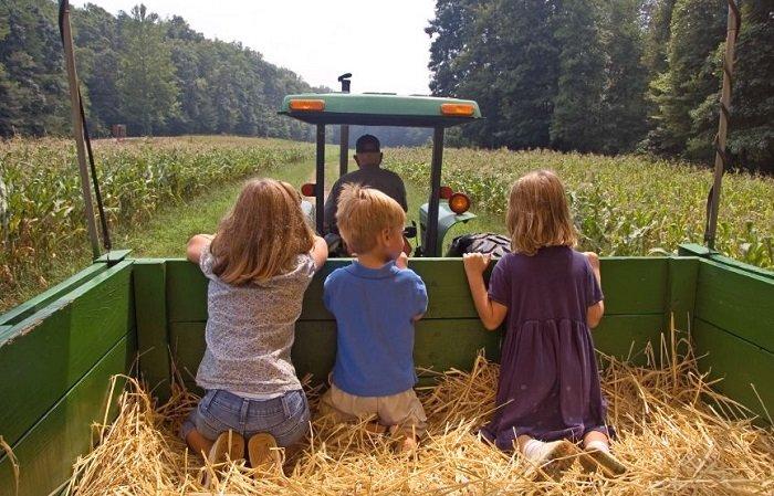 địa điểm vui chơi cho trẻ bị rối loạn tăng động giảm chú ý