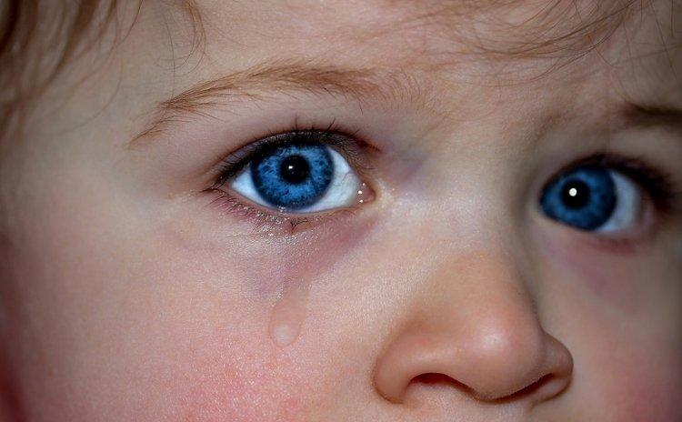 trẻ đi học mẫu giáo hay khóc
