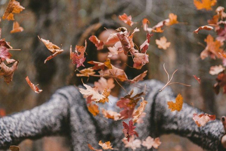 trò chơi mùa đông cho trẻ ngoài trời, bố mẹ cùng trẻ nhặt lá