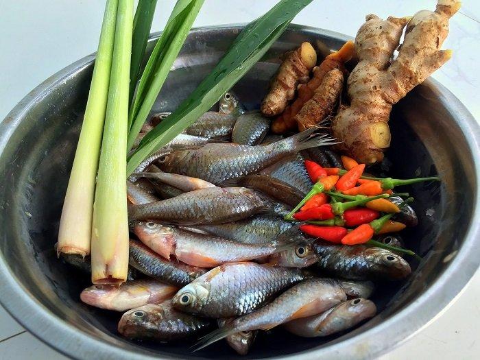 Bé mấy tháng ăn được tôm cua cá là điều khiến nhiều bố mẹ phân vân.
