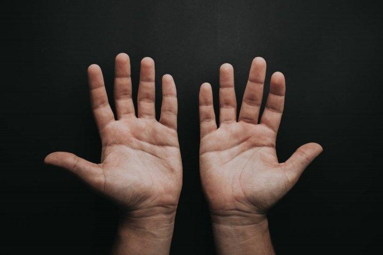 bàn tay 5 ngón