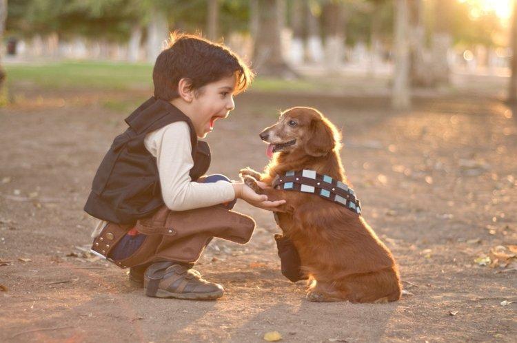 lợi ích của việc nuôi thú cưng trong nhà