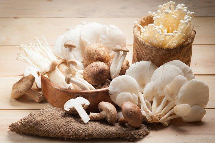 các loại nấm ăn được
