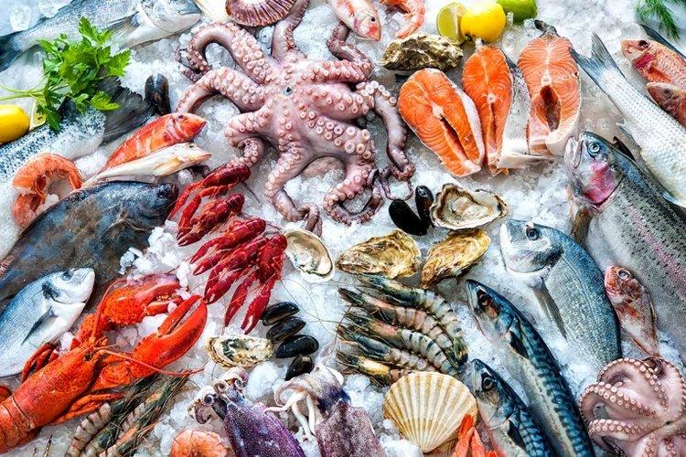 trẻ mấy tháng ăn hải sản là tốt nhất