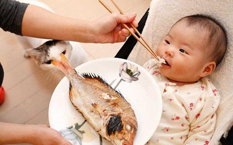 trẻ ăn cá biển