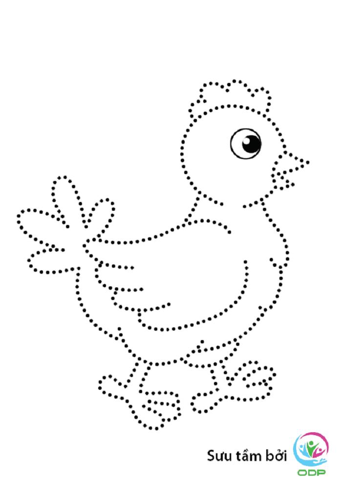 Dạy bé tập tô nét cơ bản hình con gà.